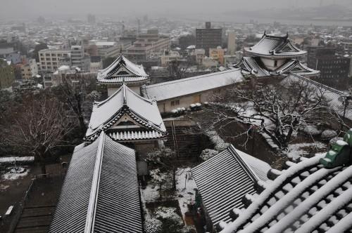 和歌山城・雪.jpg